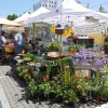 The 2011 season: A look at local farmers markets