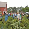 Tis the season: Master Gardener plant sales and more