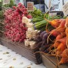 Farmers Markets: What's happening in your area