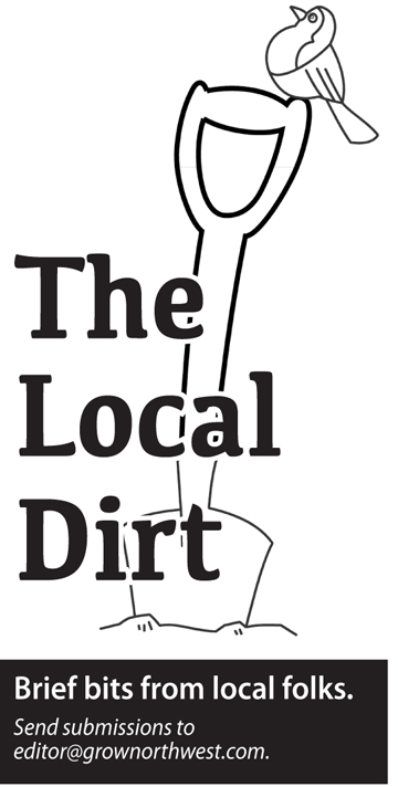 the local dirt web