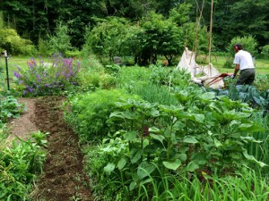 Working in the family's large garden. COURTESY PHOTO