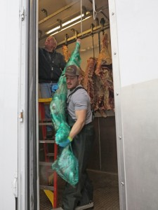 Michael Koenen moves pork from the unit for Jones Family Farms, of Lopez Island. PHOTO BY BECCA SCHWARZ COLE