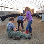 The kids help with the poultry chores. COURTESY PHOTO