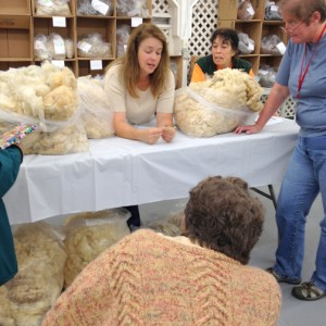 Fleece judging during last year's Fiber Fusion. COURTESY PHOTO