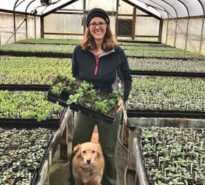 Cheri Nunamaker, owner of Dirty Knees Nursery, will share her experience growing herbs in a special workshop at the Garden Spot Nursery. COURTESY PHOTO