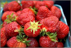 Get your fresh strawberries at the 80th annual berry Dairy Days in Burlington! COURTESY PHOTO