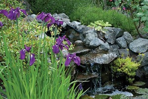 A variety of garden styles, sizes and locations are included in local tours.  PHOTO COURTESY OF ORCAS GARDEN CLUB