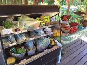 Farm Stand web