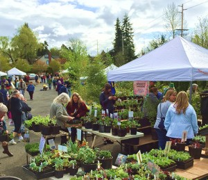 The 30th annual Fairhaven Plant and Tree Sale will be Saturday, March 31 at the Hillcrest Chapel outdoor parking lot. COURTESY PHOTO