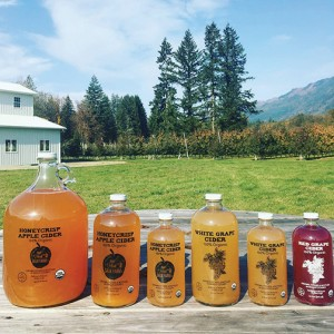 Honeycrisp apple cider and juices from Sauk Farm. COURTESY PHOTO