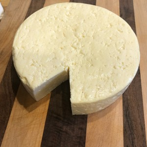 Completed cow's milk feta round. PHOTO BY MARISA PAPETTI