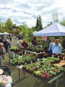 Visiting the Fairhaven Plant and Tree Sale, sponsored by Fairhaven Neighbors. This year's sale will be Saturday, March 28. COURTESY PHOTO